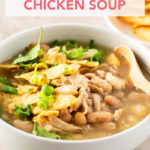Superfast Mexican-Inspired Chicken Soup // FoodNouveau.com