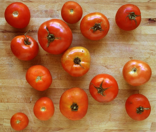 Humble (but very tasty!) garden tomatoes // FoodNouveau.com